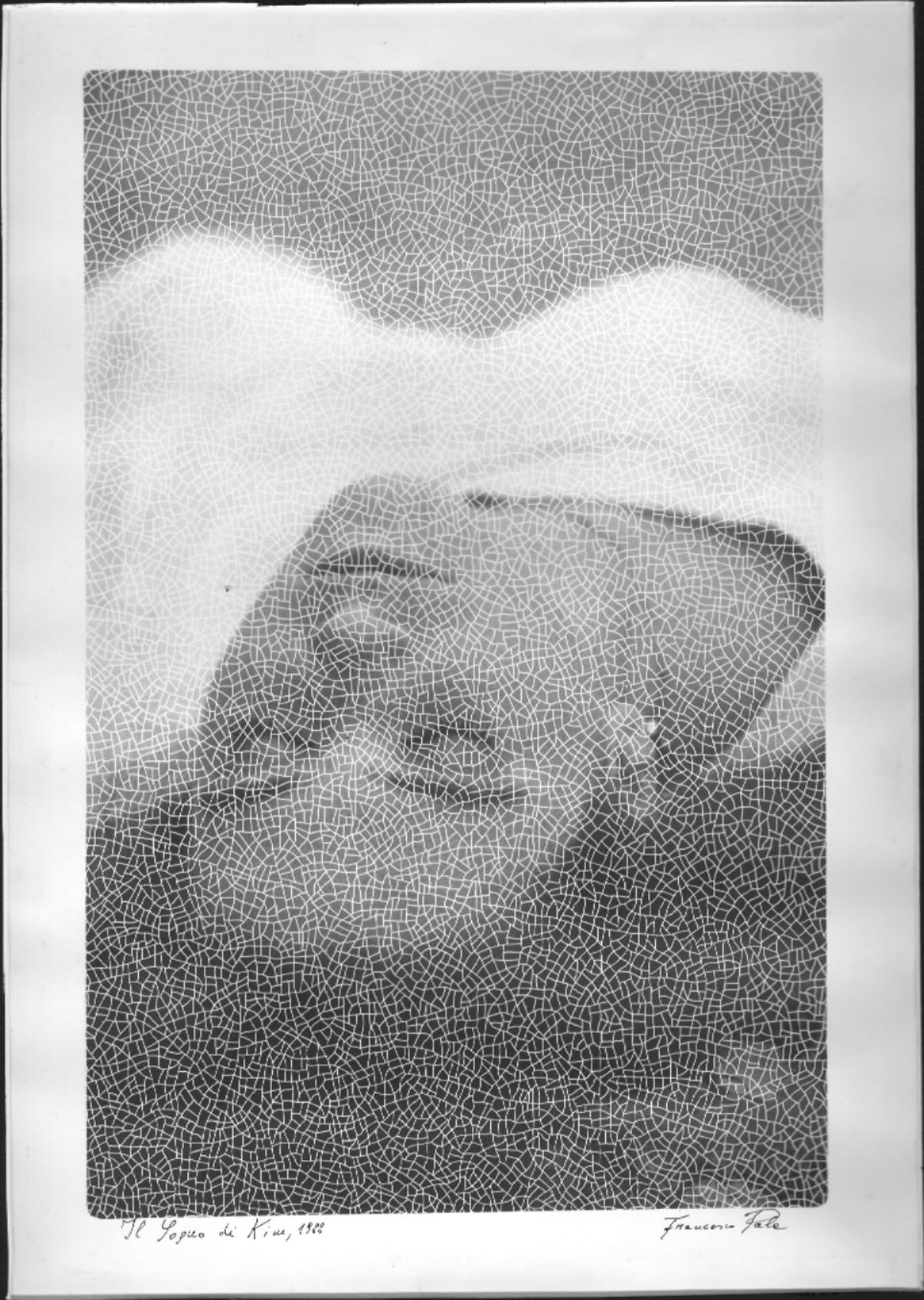 Il Sogno di Kim, 1988
