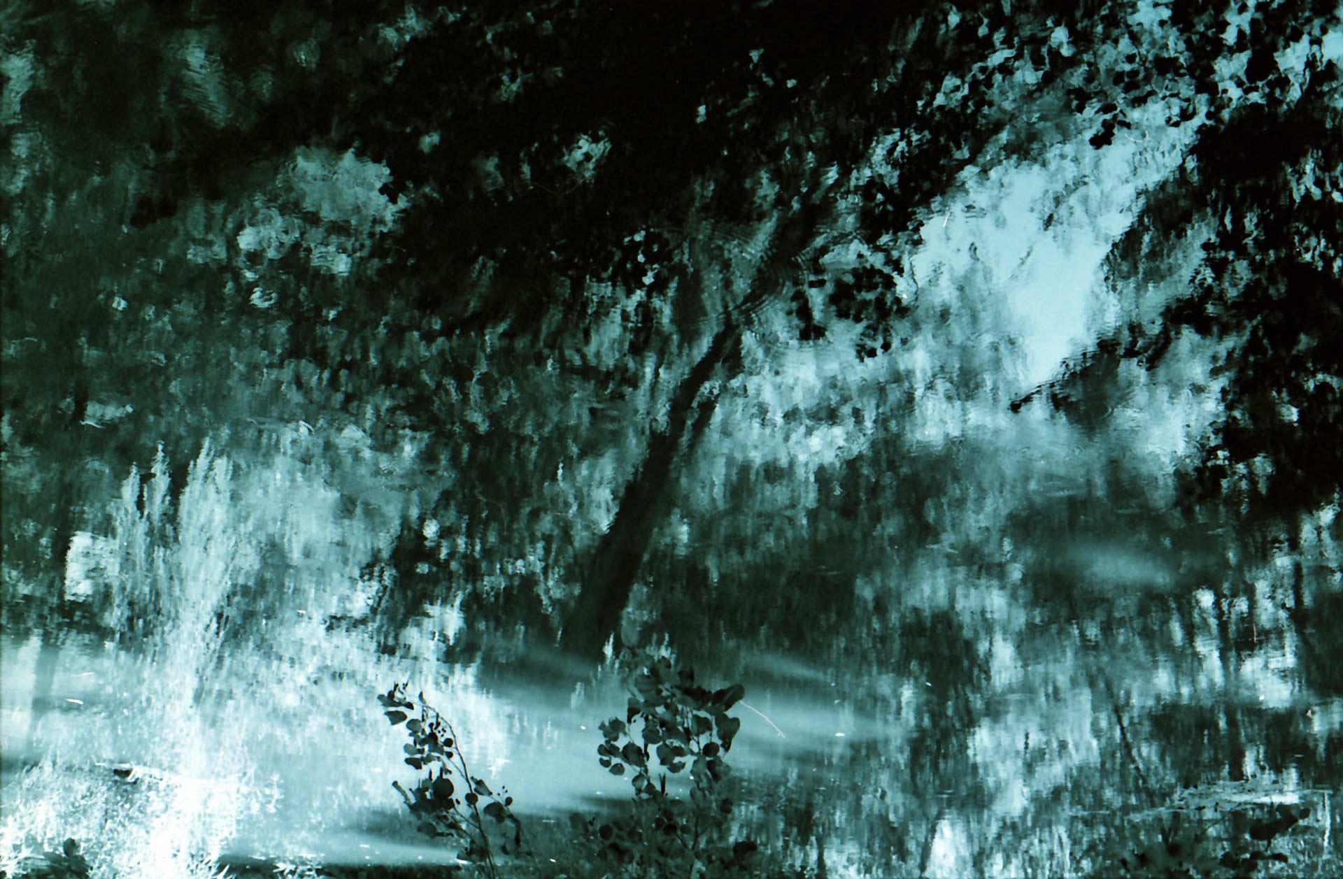 Natural equivalences n°1 - San Leonardo de Siete Fuentes 2005